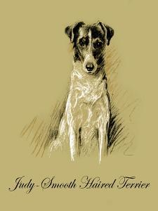 Judy The Smooth Haired Terrier by Lucy Dawson