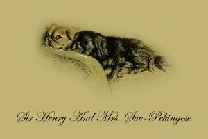 Sir Henry And Mrs. Sue The Pekingese by Lucy Dawson