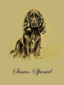 Susan The Spaniel by Lucy Dawson