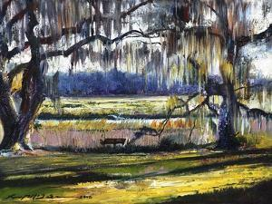 Lowcountry Spanish Moss Escape by Lucy P. McTier