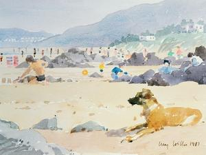 Dog on the Beach, Woolacombe, 1987 by Lucy Willis
