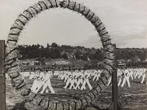 Athletes Engaged in a Fascist Parade Gymnastics by Luigi Leoni