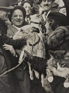 Dogs and Cats in their Arms with their Owners by Luigi Leoni