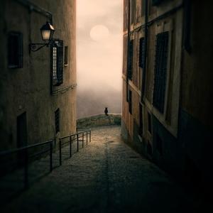 A Cat Watching the Moon in a Dark Street by Luis Beltran