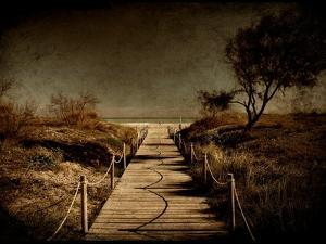 A Footpath That Goes to the Beach by Luis Beltran