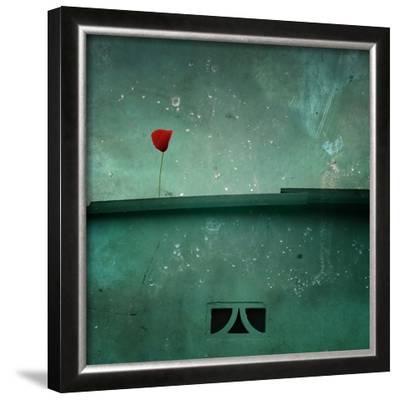 A Red Poppy on a Green House by Luis Beltran