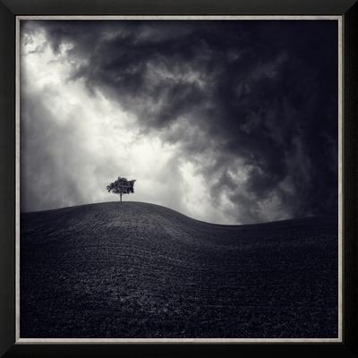 Alone Again by Luis Beltran
