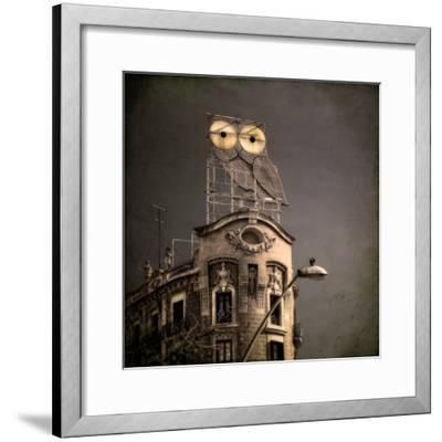 An Owl on a Roof in the City by Luis Beltran