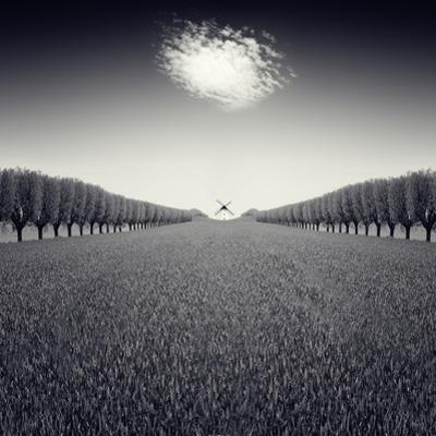 Avazio by Luis Beltran