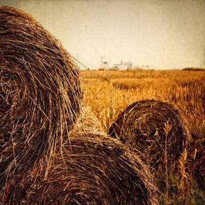 Hay Bales in the Countryside with Industry in the Background by Luis Beltran