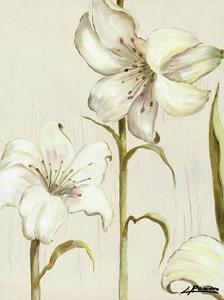 Flor Arlequin II by Luisa Romero