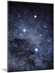 The Constellation of the Southern Cross by Luke Dodd