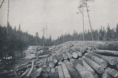 'Lumbering', 1924-Unknown-Framed Photographic Print