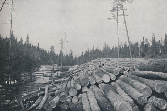 'Lumbering', 1924-Unknown-Photographic Print