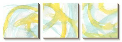 Luminosity-J^ Holland-Canvas Art Set