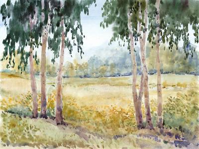 Luminous Meadow II-Tim O'toole-Art Print