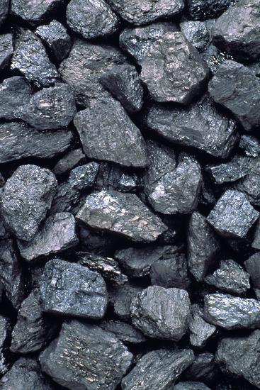 Lumps of High-grade Anthracite Coal-Kaj Svensson-Photographic Print