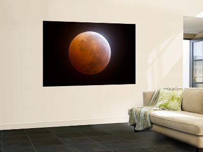 Lunar Eclipse-Stocktrek Images-Wall Mural