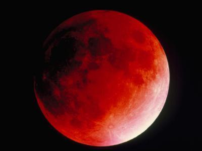 Lunar Eclipse-Dr. Juerg Alean-Photographic Print
