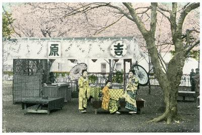 Lunch Stand in a Public Park, Japan, 1904--Giclee Print