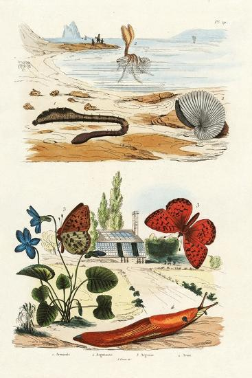 Lungworm, 1833-39--Giclee Print