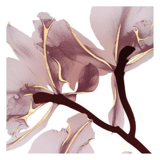 Luscious Bouquet 2-Albert Koetsier-Art Print