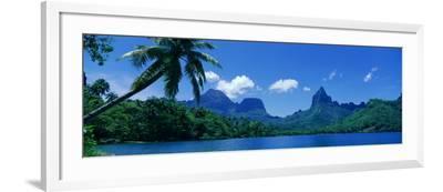 Lush Foliage and Rock Formations, Moorea Island, Tahiti--Framed Photographic Print