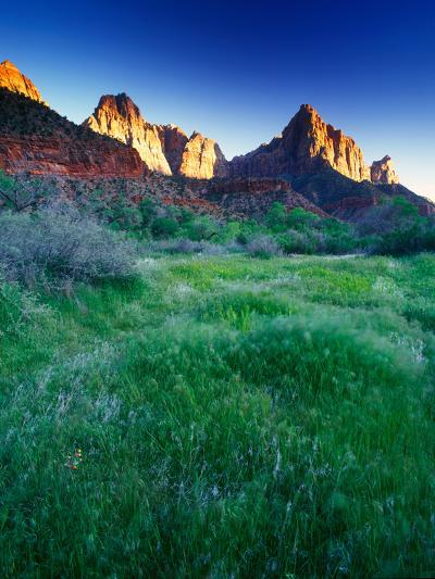 Lush Spring Meadows at the Foot of Rock Formations in Zion National Park-Keith Ladzinski-Photographic Print