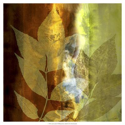 Lush Sunlight-John Butler-Art Print