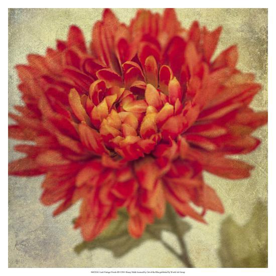 Lush Vintage Florals III-Honey Malek-Art Print