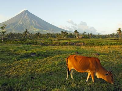 Luzon Island, Bicol Province, Mount Mayon Volcano, Philippines-Christian Kober-Photographic Print