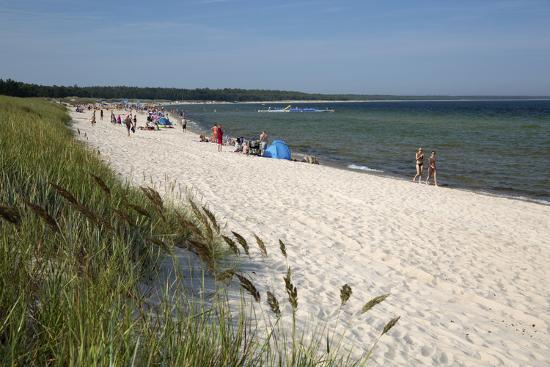 Lyckesand Beach Backed by Sand Dunes, Baltic Coast-Stuart Black-Photographic Print