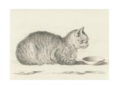 Lying Cat, Facing Right, by a Dish, 1812-Jean Bernard-Giclee Print
