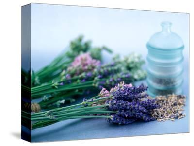 Cut Lavender, Dried Lavender & Glass Pot