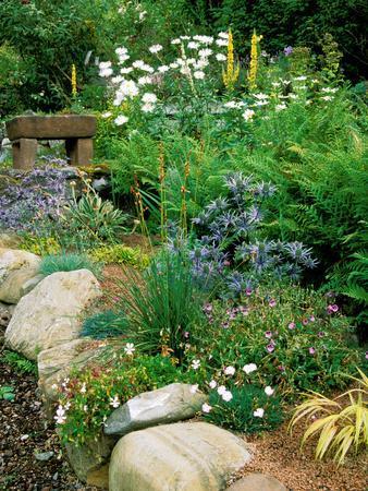 Garden Situated on a Hillside Overlooking Loch Ness, Scotland