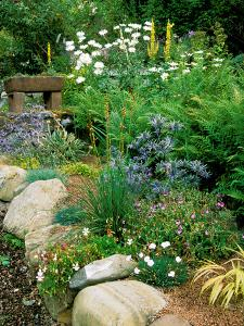 Garden Situated on a Hillside Overlooking Loch Ness, Scotland by Lynn Keddie