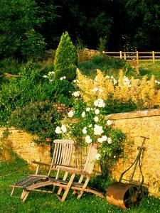 Informal Organic Garden Planted with Mixed Herbaceous Bulbs & Roses by Lynn Keddie