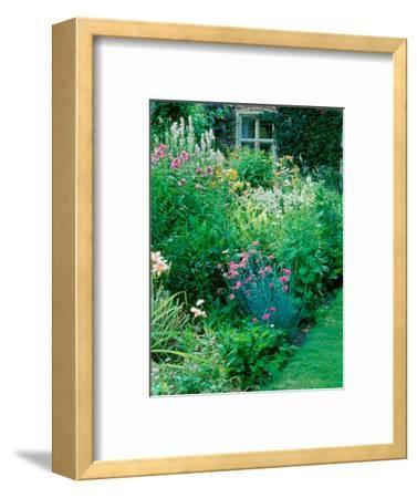 Large Cottage Style Garden, with Colourful Herbaceous Borders