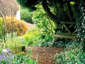 Large Informal Country Garden by Lynn Keddie