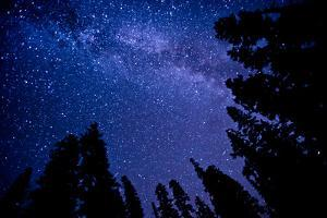 Milky Way by Lynn Midford Photography