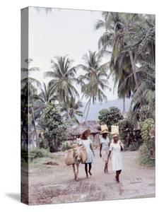 Group of Haitian Woman and a Donkey Walking Down a Dirt Road by Lynn Pelham