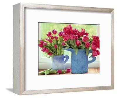 Pink Parrot Tulipa in Blue Vases with Handles, February