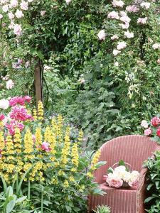 "Rose Arch, Chair Trug, Rosa ""Peace,"" Lysimachia Punctata, Rosa ""Albertine"" by Lynne Brotchie"