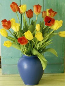 Spring Arrangement, Tulipa in Blue Vase Against Green Door by Lynne Brotchie