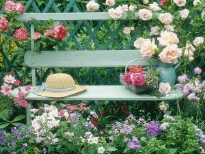 Summer Outdoor Arrangement by Lynne Brotchie