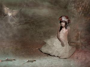 Dabfly by Lynne Davies