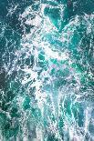 Teal Embrace-Lynne Douglas-Photographic Print