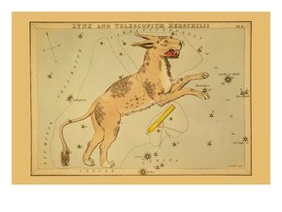 Lynx and Telescopium Herschilii-Aspin Jehosaphat-Art Print