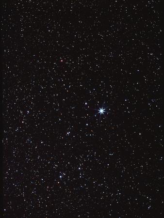https://imgc.artprintimages.com/img/print/lyra-constellation_u-l-pzjpxu0.jpg?p=0