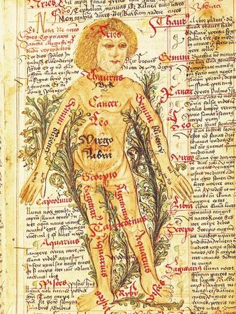"Influence of the Stars on Illnesses of the Human Body, from ""Tractatus de Pestilencia"""
